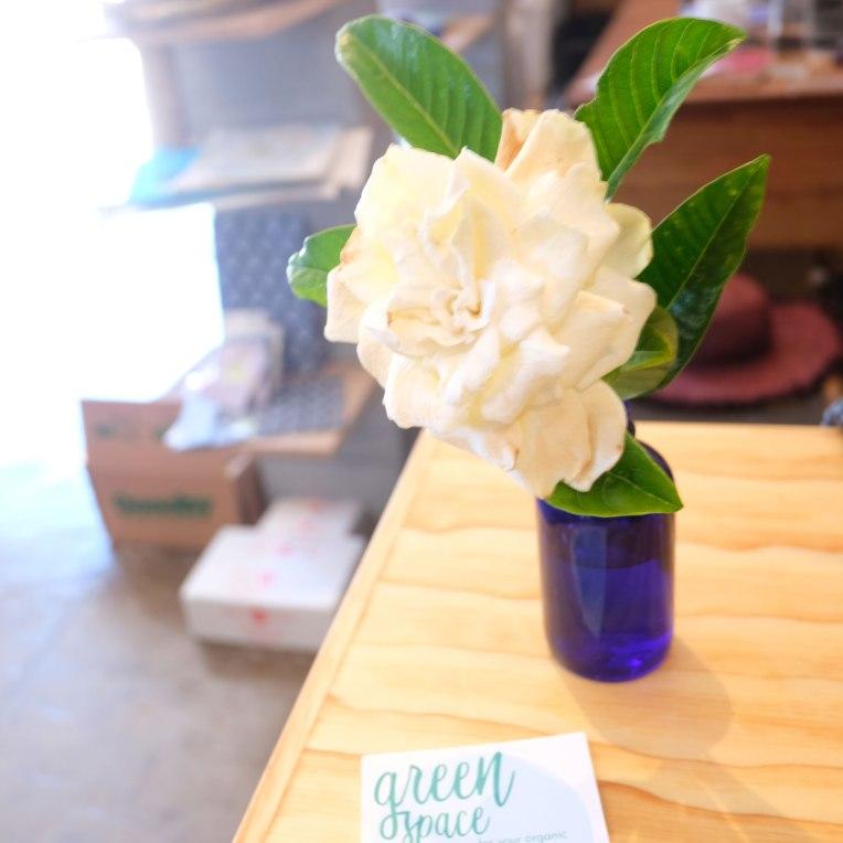 greenspace-bloom